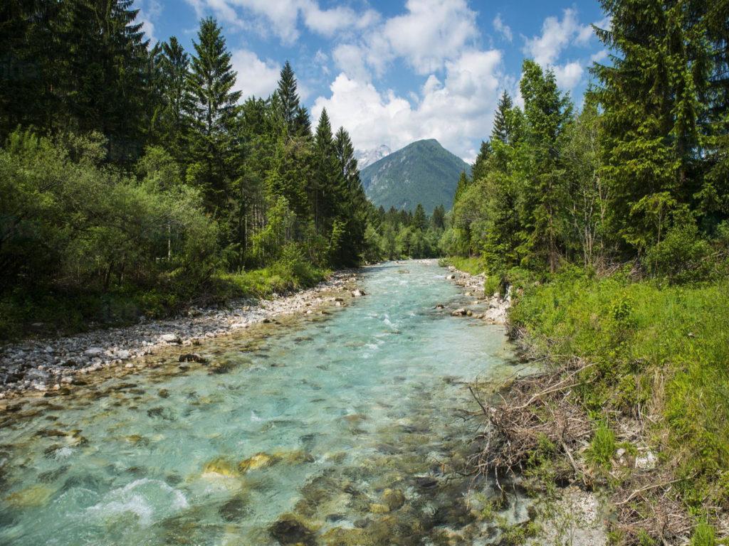 Natuur en landschap van Slovenië