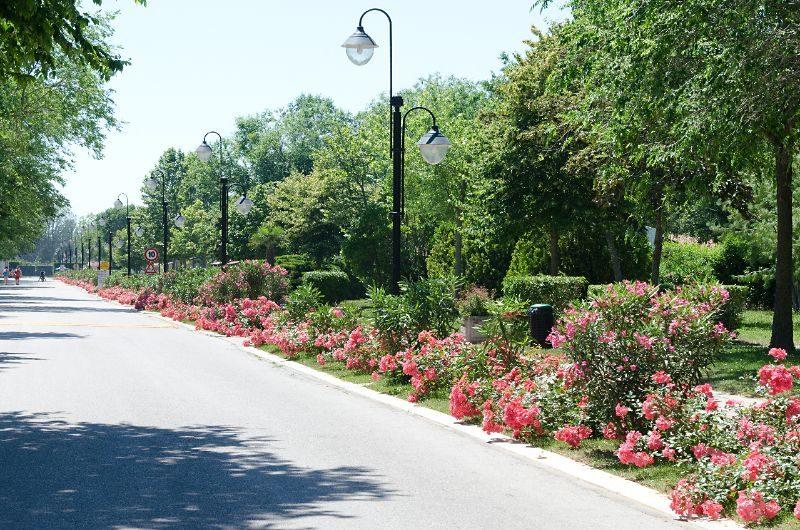 Villaggio San Francesco - Adriatico - op het park