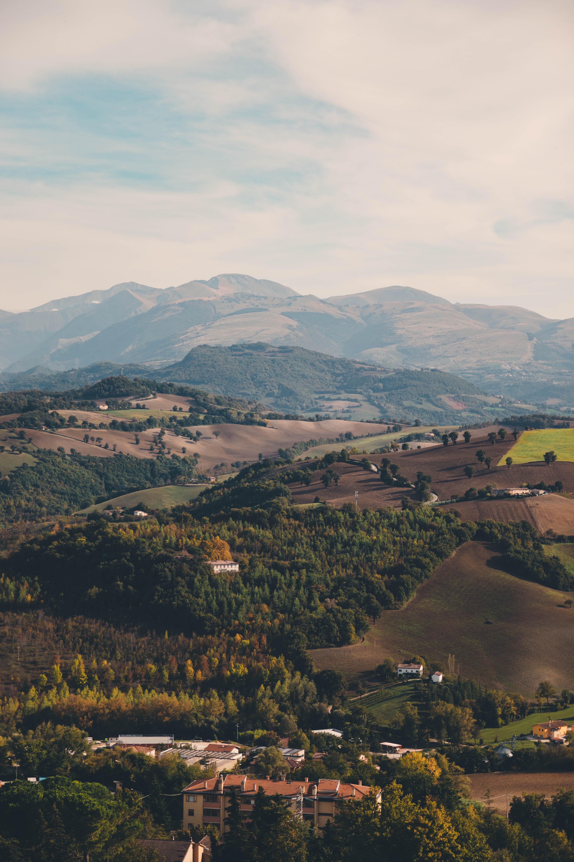 Italiaanse wijnen - Le Marche