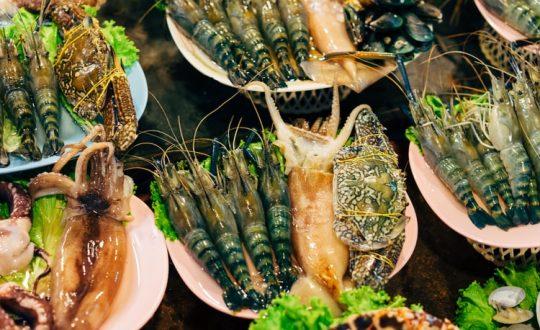 De leukste restaurantjes aan de Adriatische kust